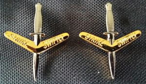 1 REGT COLLAR BADGES, 1 PAIR